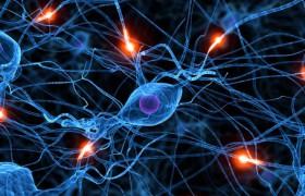 Асимптомный стеноз сонных артерий как независимый фактор риска ухудшения когнитивных функций головного мозга