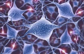 Открыто новое нейродегенеративное заболевание