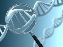 Ген, предвещающий слабоумие, более опасен для женщин