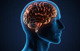 10 продуктов для улучшения памяти