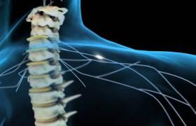 Стимуляция спинного мозга позволила парализованным пошевелить ногами