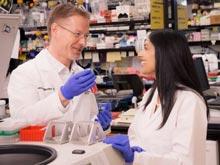 Ген, повышающий уровень интеллекта, был найден учеными