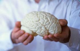 Новый комбинированный метод лечения эпилепсии успешно испытан на животной модели