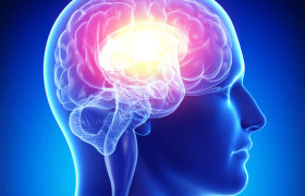 Силу боли можно измерить по активности мозга