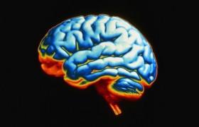 Ученые работают над устройством восстановления памяти
