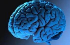 Невыспавшийся мозг «придумывает» воспоминания, заявили ученые