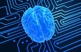 Ученые развеяли миф об использовании только 10% мозга