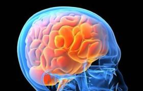Курение негативно влияет на мозг