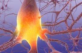 Учеными создана вакцина против болезни Альцгеймера