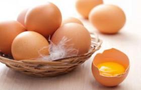 Куриные яйца укрепят память