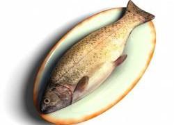 Рыба улучшит здоровье мозга