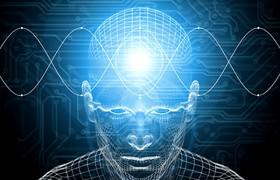 Ученые объяснили, как мозг различает запахи по смыслу