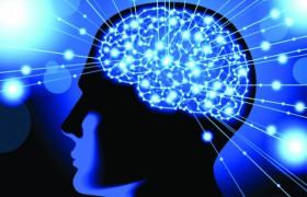 Ученые отправили сообщение из мозга одного человека в мозг другого