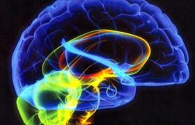 Изменения глаза могут сказать о изменениях в мозге