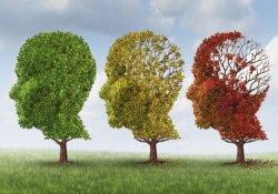 Болезнь Альцгеймера: заболевание может вызываться контактом с алюминием