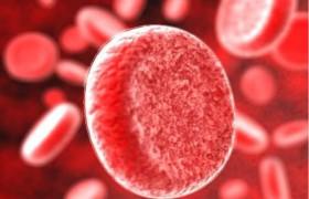 Людям с четвертой группой крови чаще других грозит потеря памяти
