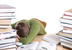 Можем ли мы работать и учиться во время сна?