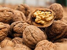 Грецкие орехи могут предотвратить или замедлить развитие болезни Альцгеймера