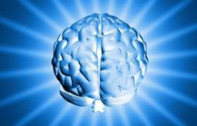 Ученые: мозг человека может контролировать работу генов