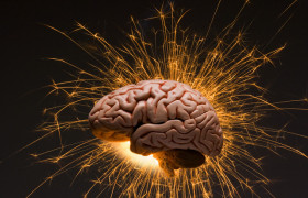 Установлено, как мозг адаптируется к восстановлению зрения у незрячих