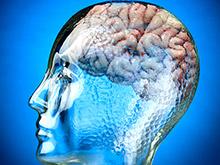 Именно генетика решает, насколько быстро стареет мозг