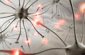 Положительный эффект хирургического метода лечения эпилепсии способен сохраняться на протяжении более 15 лет