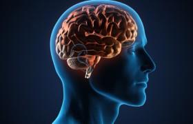 Как улучшить память и концентрацию