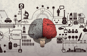 Обнаружены неизвестные типы клеток мозга