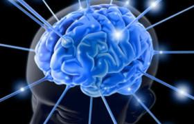 Выявлено важное свойство ответственной за движения части мозга