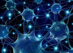 Музыка оживляет нейроны