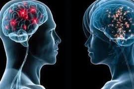 Спортивный допинг содержит в себе ключ к восстановлению мозга