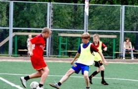 Игра в футбол вредит умственному развитию
