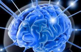 Названы привычки, которые убивают мозг