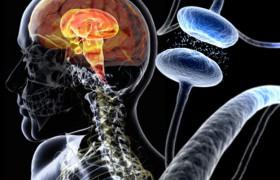 Неврологи нашли устройство, помогающее оценить тяжесть болезни Паркинсона
