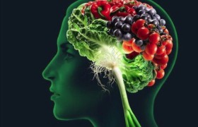 Полезные витамины для нашей памяти