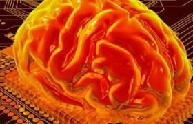 Ученые создадут бионический мозг