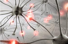 Ученые: эпилепсия и аутизм связаны