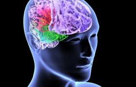 Риск появления инсульта зависит от качества сна