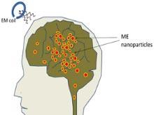 Микроскопические частицы полностью раскрывают потенциал головного мозга