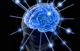 Ученые: к вечеру у человека уменьшается объем мозга