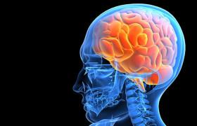 Сотрясение мозга возможно диагностировать по голосу
