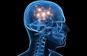 Корица способна помочь в лечении паркинсонизма