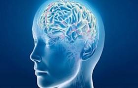 Ученые: работа более 40 часов в неделю может привести к инсульту