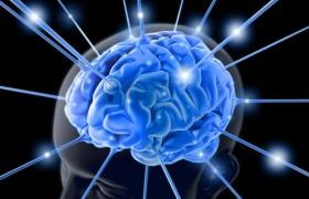 6 продуктов для здоровья мозга