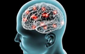 Выяснилась роль кальция в развитии болезни Альцгеймера