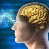 Сжимание кулака стимулирует работу памяти