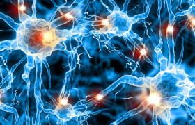 Технологии улучшения памяти начали испытывать на людях