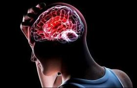 Сорго лимонное: новое в лечении головных болей и мигрени