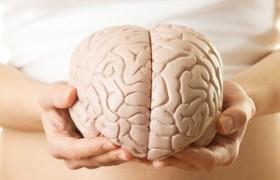 Ученые: у злых людей мозг меньше