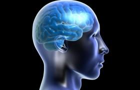 Как развить неограниченные возможности мозга